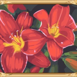 GX7262 2015 new flower picture canvas oil paint by numbers kit for beginners