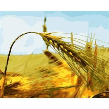 Gx6633 abstrakte malerei leinwand gesetzt Natur, landschaft, kreative Tätigkeit setzt malen nach zahlen