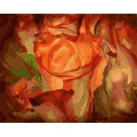 Pintura diy by números artista abstracto de color de aceite set para principiantes GX7072