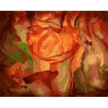 diy malen nach zahlen abstrakter Künstler Ölfarbe gesetzt für Anfänger gx7072