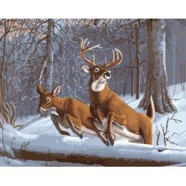 Gx 7653 de la lona pintura al óleo by números ciervos arte kits