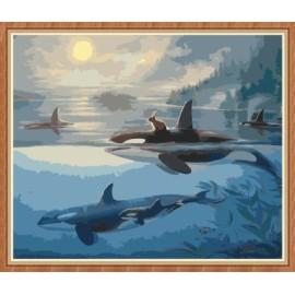 40x50cm delphin paintboy leinwand Öl malen nach zahlen gx7788