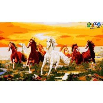 diy Öl paing nach zahlen abstrakte malerei pferd