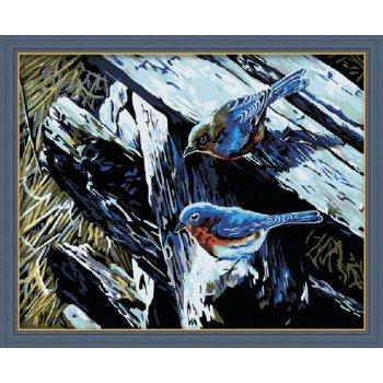 Großhandel malen mit zahlen vogel-design tier bild auf leinwand