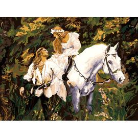 pferd design malen nach zahlen frauen und Pferd bild Ölbild