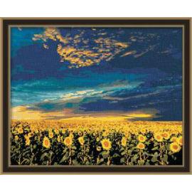 paintboy malen nach zahlen sonnenblumen Ölbild blume foto malerei
