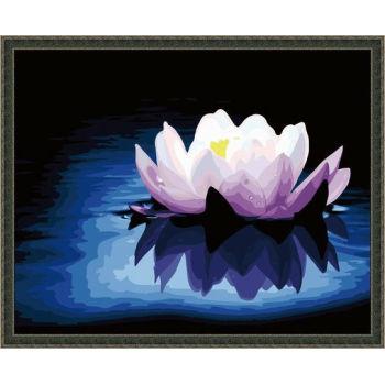 Malen mit zahlen blumenmalerei- en71-3- astmd- 4236 acrylfarbe- g066