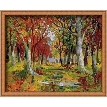 Malen mit zahlen- en71-3- astmd- 4236- junge 40*50cm acrylfarbe malen
