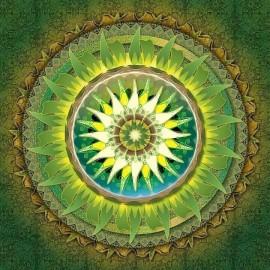 handarbeit Mandala voller muster diamant malerei mit holzrahmen fz002