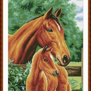 horse picture Diy diamond painting by numbers 2.5mm round diamond GZ0045