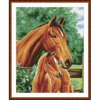 Pferd bild diy diamant malen nach zahlen 2.5mm runden Diamanten gz0045