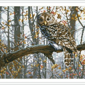 diy art diamond painting animal owl picture GZ080
