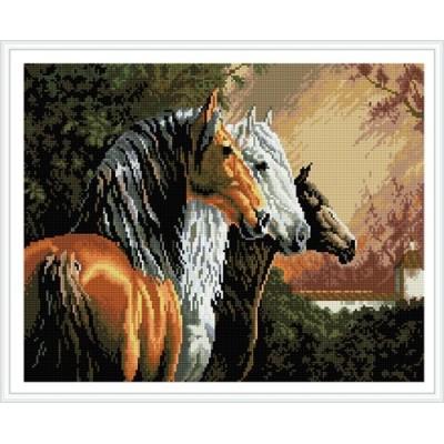 paint boy horse photo diy diamond painting GZ349