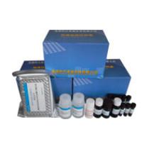 Spectinomycin ELISA Diagnostic Kit