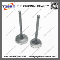 Motorcycle 250cc Intake and exhaust valve