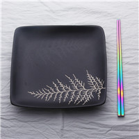 Lekoch 4PCS Rainbow Food Grade Top Chopsticks Tableware Length 24cm