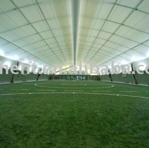 Fútbol de césped Artificial césped, Interior de fútbol