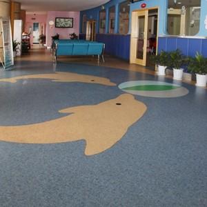 Hanflor 20mX2m Easy Clean Non Slip Wear Resistant Matt Finish Children School PVC Roll Floor