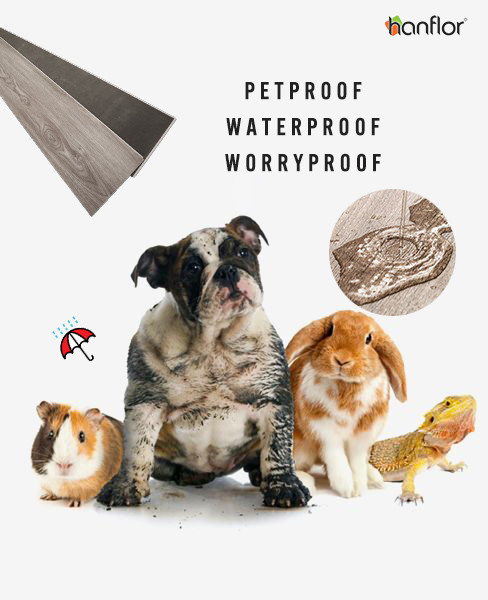 Pet friendly flooring,pet proof flooring