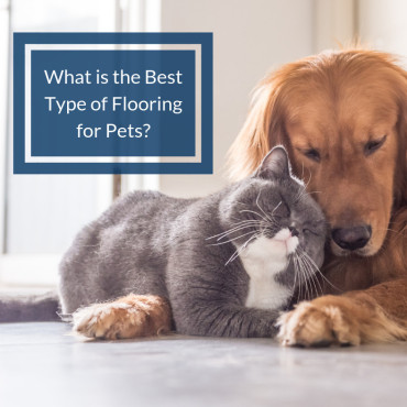 Are you looking for the best flooring for pets?