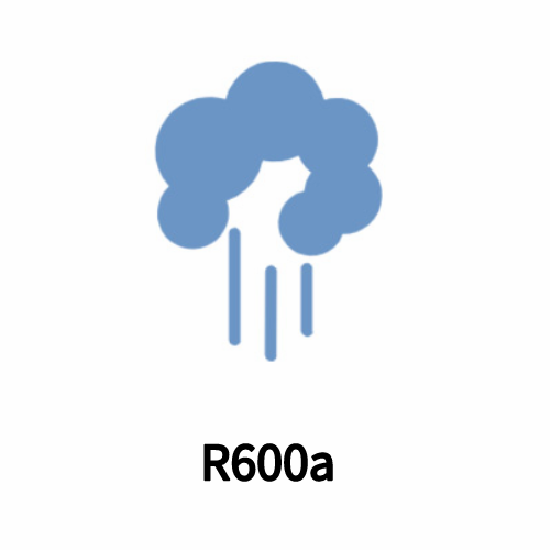 R600a