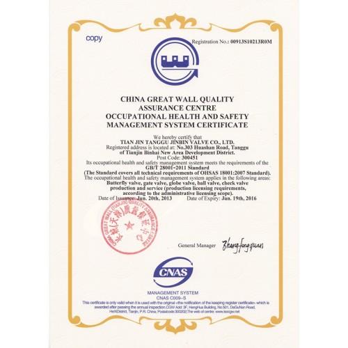 OHSAS18001:2004