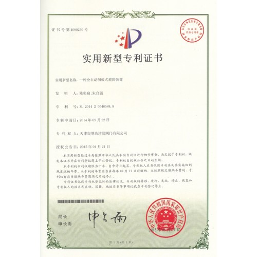 Utility Model Patent Certificate  13