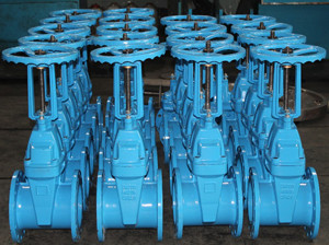 BS5163 RS Resilient wedge gate valve