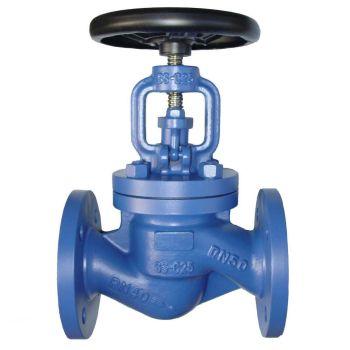Cast iron flange globe valve