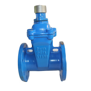 Special wrench lock gate valve