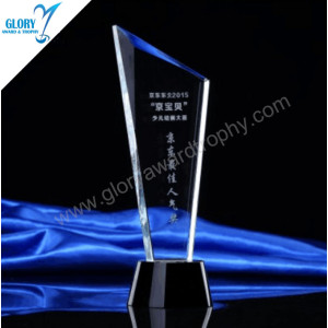 Custom Engraved Crystal Plaques Business Award Trophies