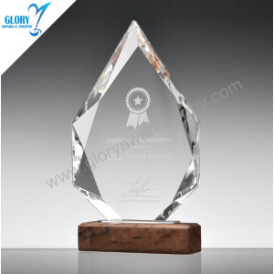 Film crysta award trophy with wooden base