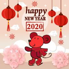 Hongli 2020 New Year Holiday Notice