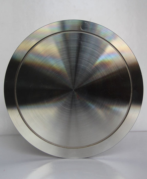 Lary high quality hot sale blank stainless steel blank flange