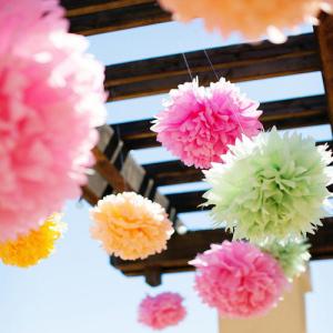 5pcs 25cm Tissue Paper Pom Poms Flower Balls