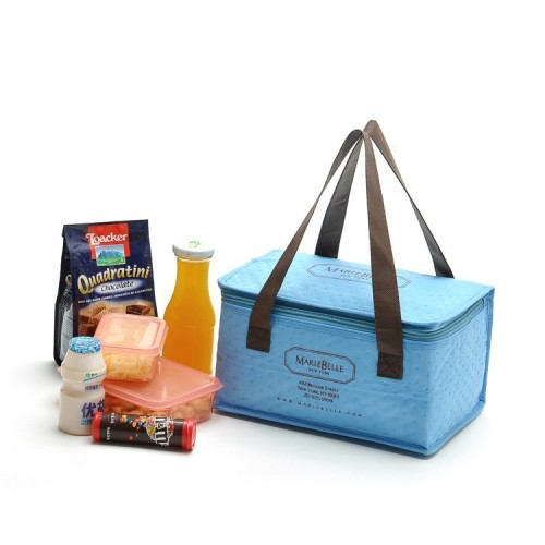 Extra large insulated cooler bag for wine