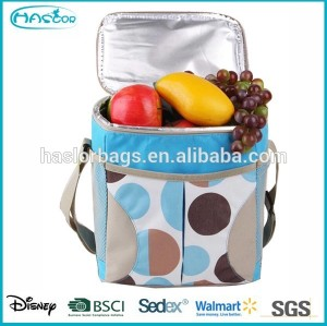 Fashion Dual Compartment Insulated Lunch bags for Adults