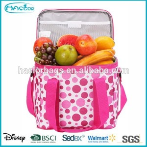 China cheap packit freezable lunch bag for ladies