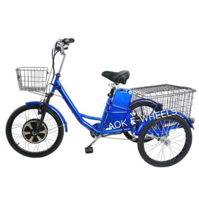 Newest 350W Geared Motor Electric Tricycle with Lead Acid Battery (TC-017N)