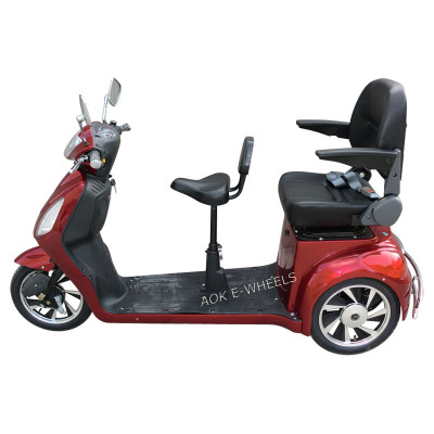500W/800W Two Seat Electric Tricycle for Old People (TC-016B)