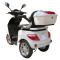 500W/700W Electric Mobility Scooter for Old People with Disk Brake (TC-022A)