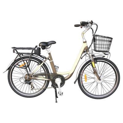 Lithium Battery E-Bike with Front Disk Brake/ Rear V-Brake (TDE-038B)