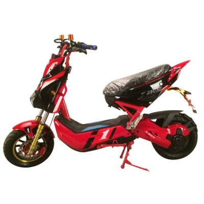 1000W Electric Motorcycle with Brushless Motor and Disk Brake (EM-009)