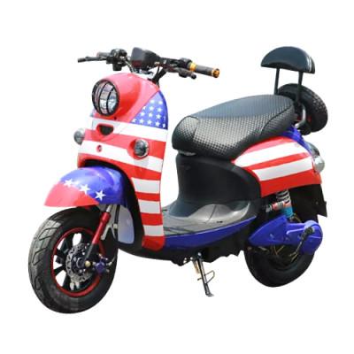 Fashionable Design 1000W Brushless Motor Electric Motorbike (EM-010)