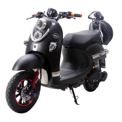 1000W Brushless Motor Lead Acid Battery Electric Motorbike (EM-011)