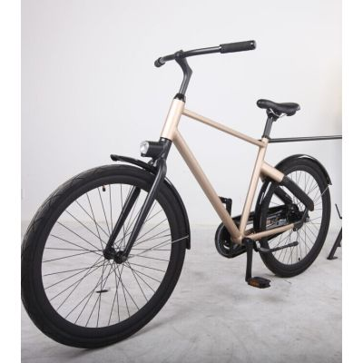 Hot Sale 28'' Aluminum Bicycle with Rear Coaster Brake (BE-001)