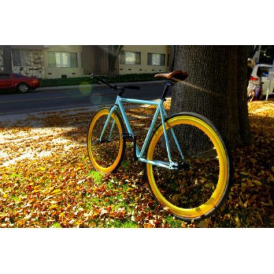 Aluminum Frame City Bike/Bicycle with Front Radius Brake (BE-003)