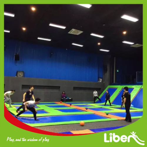 Kids Large Sized Business Plan Indoor Sky Jumping Trampoline Park