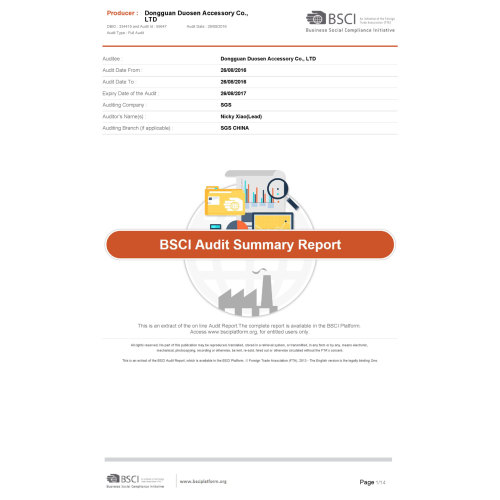 BSCI Summary Audit Report