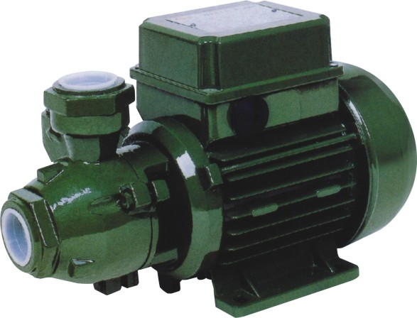 Pump Peripheral Pump With Motor Protector High Efficiency